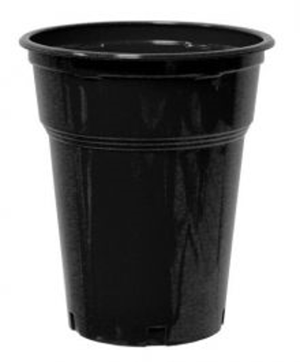 ΠΟΤΗΡΙ FREDDO ΜΑΥΡΟ  300ml - (50τεμ.) - (No 504) - (LUX-PLAST)